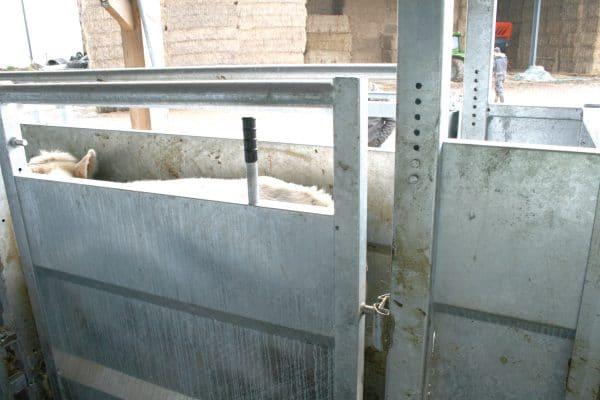 portillon contention bovine